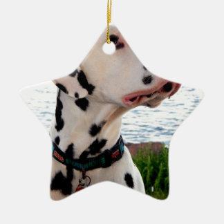 Kevin The Dalmatian Ceramic Ornament