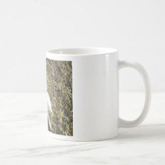 Kevin The Dalmatian Coffee Mug