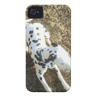 Kevin The Dalmatian iPhone 4 Case-Mate Case