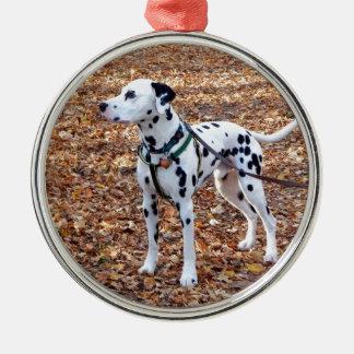 Kevin The Dalmatian Metal Ornament