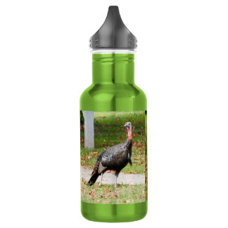 Kevin The Turkey - Old Wethersfield , CT (2 pics) 532 Ml Water Bottle