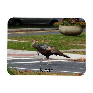 Kevin The Turkey - Old Wethersfield , CT Magnet