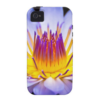 Kew Gardens Waterlily London Case-Mate iPhone 4 Cases