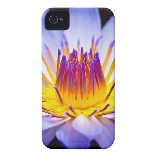 Kew Gardens Waterlily London iPhone 4 Case