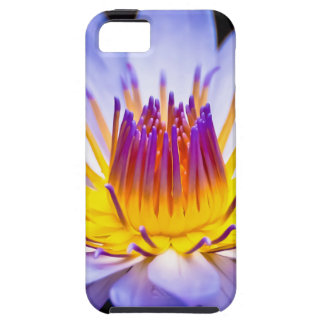 Kew Gardens Waterlily London iPhone 5/5S Cover