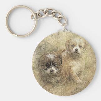 key chains, beautiful, images, birds, animals keychain