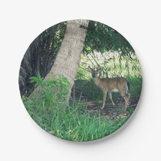 Key Deer Paper Plate