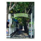 Key Lime Square Postcard