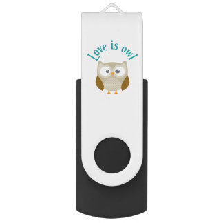 "Key usb ""Coils is owl "" USB Flash Drive"