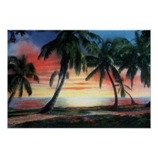 Key West Florida Tropical Sunset Poster