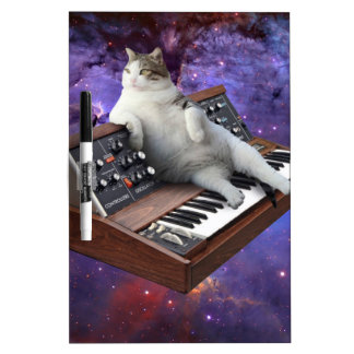 keyboard cat - cat memes - crazy cat dry erase board