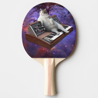 keyboard cat - cat memes - crazy cat ping pong paddle