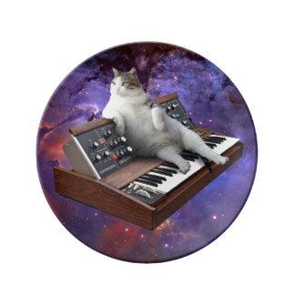 keyboard cat - cat memes - crazy cat plate