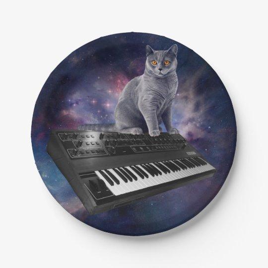 keyboard cat - cat music - space cat 7 inch paper plate