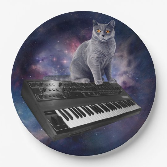 keyboard cat - cat music - space cat 9 inch paper plate