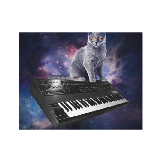 keyboard cat - cat music - space cat canvas print