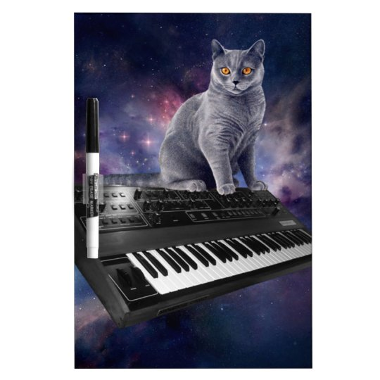 keyboard cat - cat music - space cat dry erase whiteboards