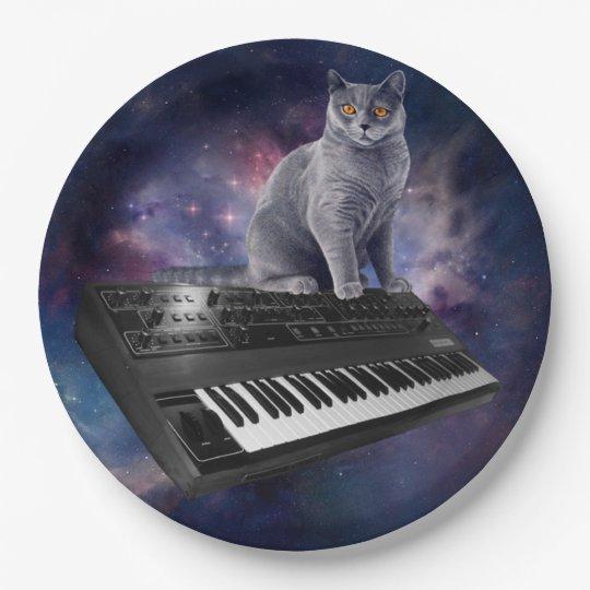 keyboard cat - cat music - space cat paper plate