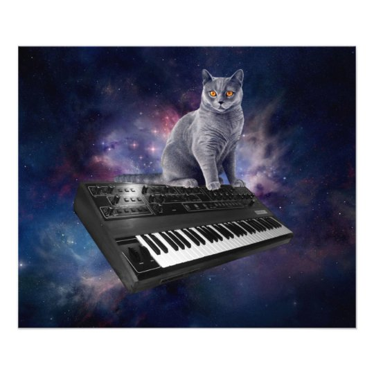 keyboard cat - cat music - space cat photographic print