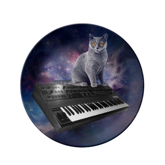 keyboard cat - cat music - space cat porcelain plate