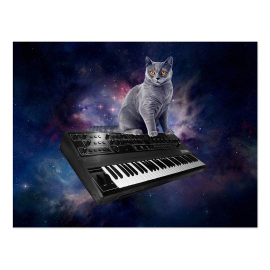 keyboard cat - cat music - space cat postcard