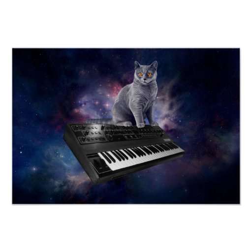 keyboard cat - cat music - space cat poster