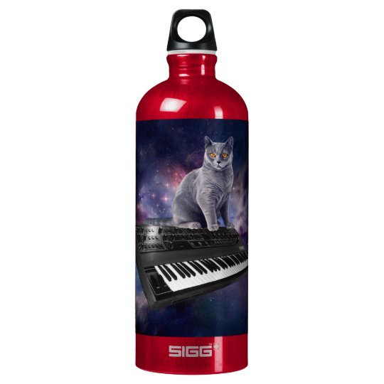 keyboard cat - cat music - space cat water bottle