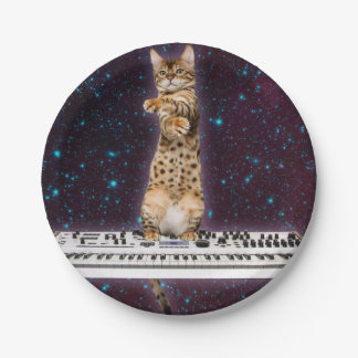 keyboard cat - funny cats  - cat lovers paper plate
