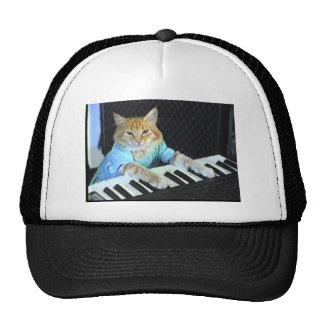 Keyboard Cat Hat