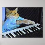 Keyboard Cat Wall Poster!