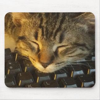 Keyboard Kitty Mouse Pad
