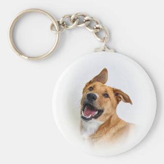 """keychain featuring Oscar the """"want to be"""" Lab"""
