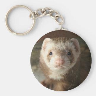 Keychain Ferret close-up