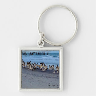 Keychain with picture of birds, black skimmers