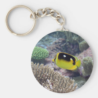 Keyring featuring a butterfly fish in the coral keychain