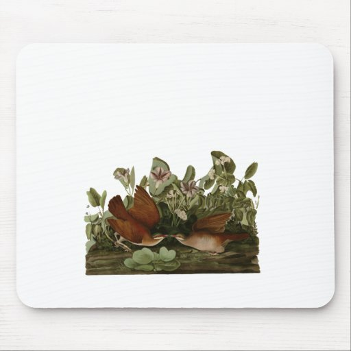 Keywest Doves Mouse Pads