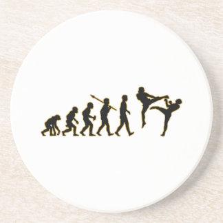 Kickboxing Coaster