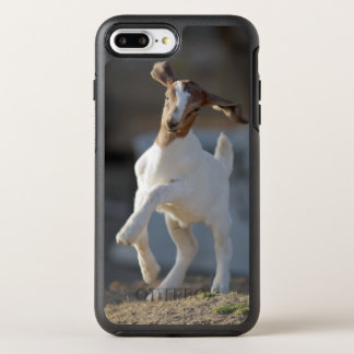 Kid goat playing in ground. OtterBox symmetry iPhone 7 plus case