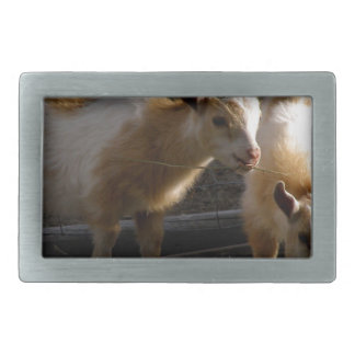 Kid Goats Belt Buckle