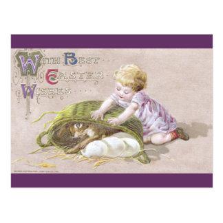 Kid Uncovers Bunny Hiding Eggs Under Basket Postcard