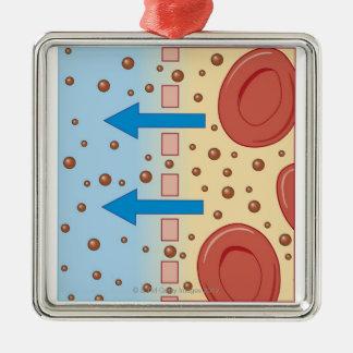 Kidney Dialysis Silver-Colored Square Ornament