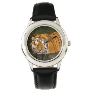 Kids Classic Watch/Wildlife Tiger Wrist Watches