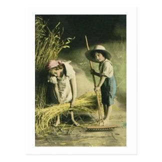 Kids Raking Hay 1903 Vintage Hand Colored Postcard