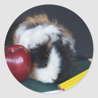 Kids School Guinea Pig Stickers