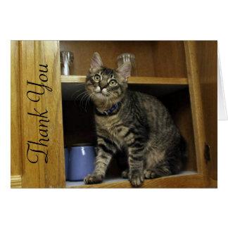 Kiimber Kitty in the Cupboard Thank You Card