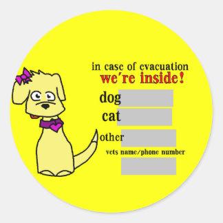 """Kiley"" Evacuation Sticker"