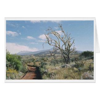 Kilimanjaro Moorlands Card