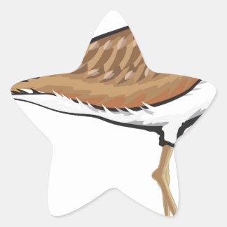 Killdeer bird vector illustration simplified star sticker