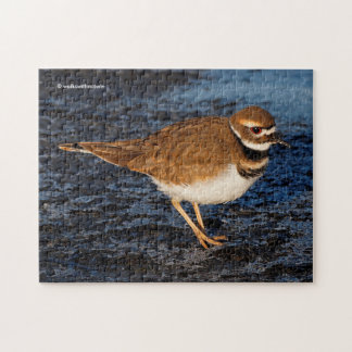 Killdeer on the Icy Mudflats Jigsaw Puzzle