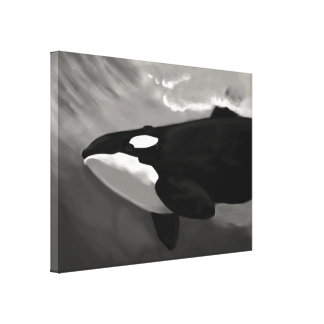 killer whale black and white canvas print